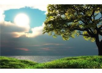 Peygamberimizin gerçekleşen hadislerinden neden bahsedilmiyor?
