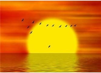 Kuşlar göç zamanını nasıl belirliyor?
