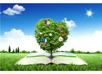 Kuran Mucizeleri kalplerdeki imana iman katıyor- 1