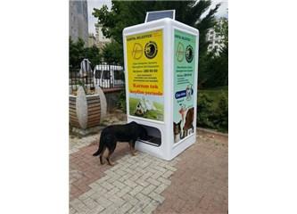 Kartal Belediyesi sokak hayvanları için akıllı geri dönüşüm kutuları projesi başlatmış....