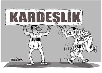 Türk Kürt savaşı