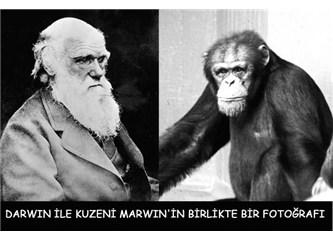 Darvin'in maymunları