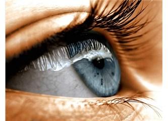 Göz kör tesadüflerle oluşacak bir organ değil!
