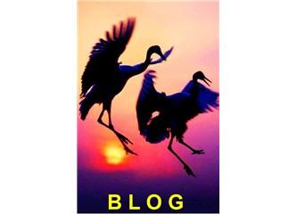 Laylay Lom'cular, Blog'lardan düşürürler, Eşekten düşmüş gibi beter ederler.