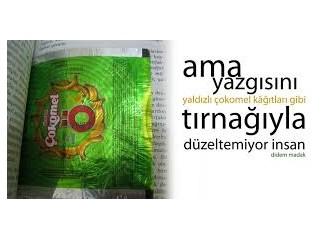 Şiir Kitabım