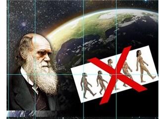 Körelmiş organ iddiası evrimcilerin yanılgılarından biridir- 2