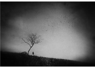 Kafka: Aşka Dair