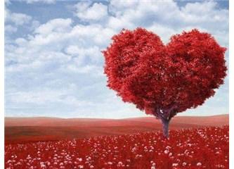 Sevgi ve Kazanç