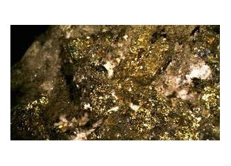 Denizli'nin Çal ilçesi Akkent (Zeyve) Kasabasında zengin altın madenleri bulundu…