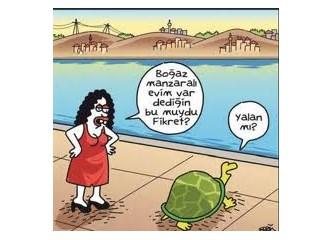 Türk evi şeysi