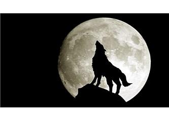 Kurt İle Ayın hikayesi