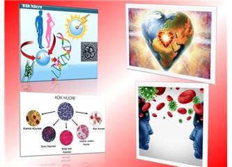 Evrenin Kök Hücresi aşktır. Aşk; Sevgiye, nefrete, kin, öfke ve hoşgörüye farklılaşır.