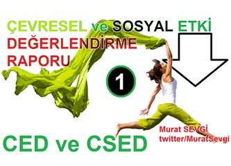 Sosyal CED: Çevresel ve Sosyal etki değerlendirme (CSED) - 1