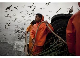 Denizlerimiz, teknelerimiz, balıklarımız.
