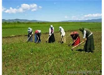 Tarım ve işsizlik