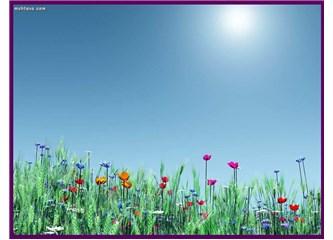 Bahar..