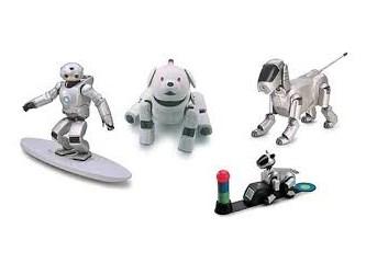 Robotlar 2013: Bir