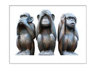 """""""3 Maymun"""": Siz onlardan ne anlamak isterseniz..."""