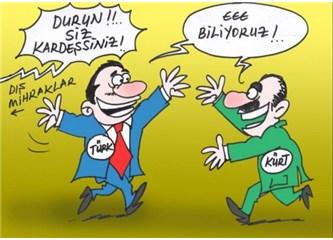 Kürtler Türkler ayrılırsa