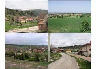 Kütahya'nın yetim köyü; Dulkadir Köyü