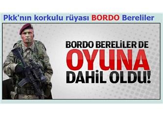 PKK TERÖRÜ NASIL BİTER ?...