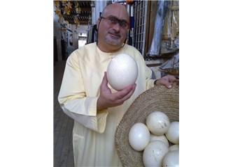 Neden sadece tavuk yumurtası yiyoruz? Kaz, ördek ve diğer hayvanların yumurtası yenmiyor mu?