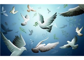 Haiku : B11. Barış; B12. Mıcık
