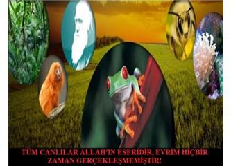 Devletin kanalı TRT'de sürekli evrim propagandası yapılıyor!