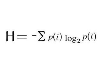 Paradigmatik Paradoks: Shannon Enformasyon Entropisi