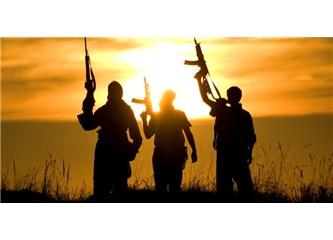 Teröristlere karşı mücadelede gariban Türk askerleri yerine profesyonel askerler görevlendirilmeli