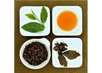Oolong çay