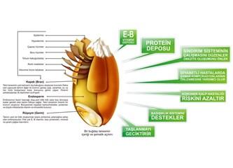 Kanser tedavisi için mucize bitkisel çözüm (Filizlenmiş buğday)