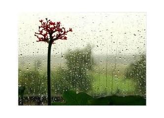 Nisan yağmuru