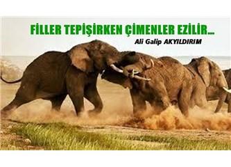 Filler tepişirken çimenler ezilir…