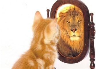 Kendini Tanı…