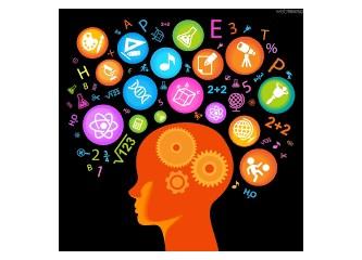 İnsan Beyni, Beynişim, Kapasitesi, Yaşam ve Yarışma