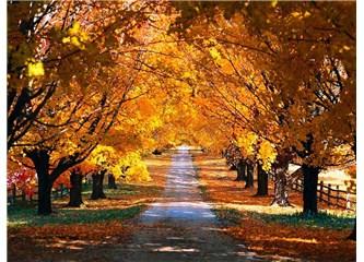 Sonbaharda sağlıklı ve fit kalın