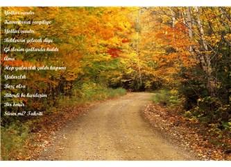 Sonbahar hüznün ayrılığın ve aşkın mevsimi