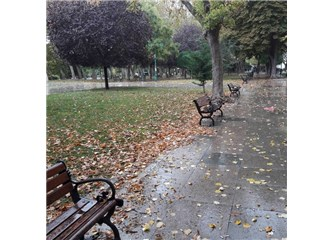 Severdik Yağmuru