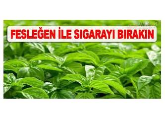 Fesleğen yaprağı ile Sigara bırakma ve Fesleğen 'in faydaları