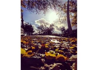 Ne Eylül ne Ekim, ben sonbaharı Kasım'da anlarım
