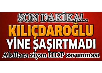 HDP arkasını kime dayamıştı?