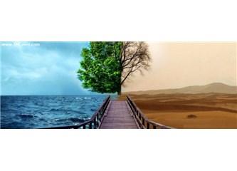 Dert ağacı