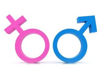 İnsanlarda cinsiyetin belirlenmesi