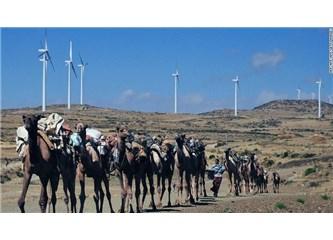 Etiyopya Afrika'nın rüzgar başkenti olma yolunda