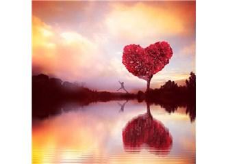 Haydi gel seninle aşk hakkında kelam edelim