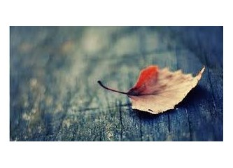 Ölüm anlık bir olay değildir. Üç ay önceden başlar…