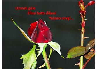 Süzme sözcükler: (Haiku) Yalancı sevgi…