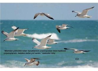 Kuşlar, Kalender ve Devletler
