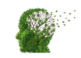 Alzheimer'da basit testlerle erken teşhis mümkün